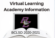 Virtual Learning Academy Information