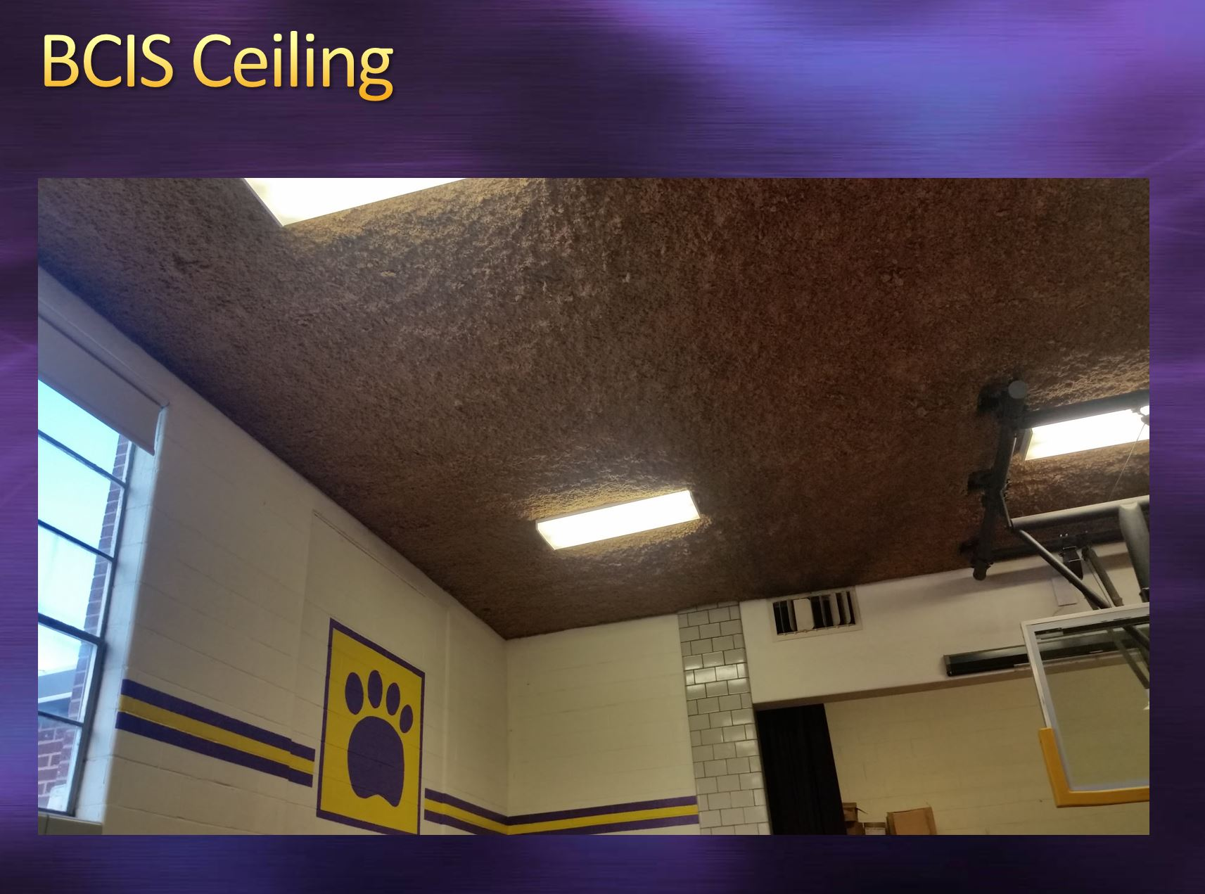 BCIS Ceiling