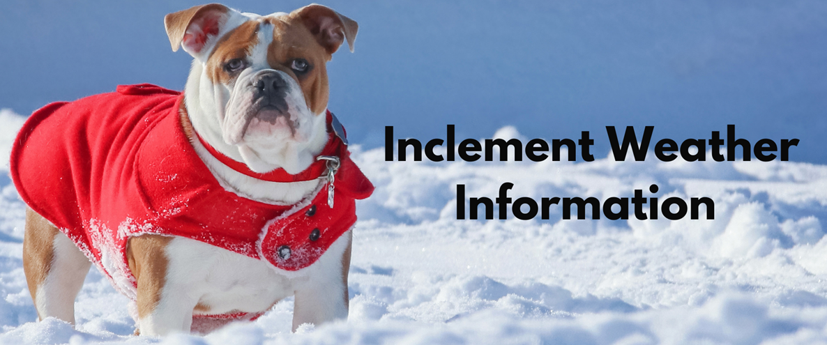 Inclement Weather Info